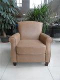 Sofá del cuero genuino de la sala de estar (C458)