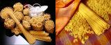 Novo tipo alimento italiano da massa do macarrão que faz a máquina