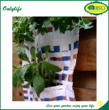Auto caldo di vendita di Onlylife che innaffia la piantatrice vivente verde della parete del giardino verticale