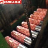 Coloré décorer la bobine en acier de PPGI pour des matériaux de toiture