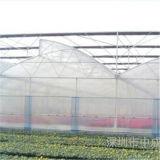 Tipo revestido plástico de acero galvanizado invernadero del sangrado de márgenes de Fram con la buena ventilación