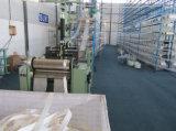 Sangle 100% solide de polyester pour le levage industriel