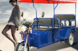 Triciclo elétrico do fabricante sem escova de China do motor
