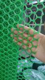 Hexagonale Plastic Vlakke Netto