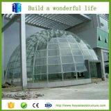 Edificio de encargo de la estructura de acero de la dimensión con la bóveda geodésica