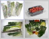 BG-600xw de Vergeldende Machine van de Verpakking van de Broccoli van het Pak van de Stroom van het Hoofdkussen Automatische