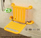 Equipamiento médico plástico fácil de calidad superior de la silla del tocador de los pacientes