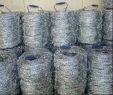 Stachel-Draht Bwg14X14 Price Per Roll/Gi Stachel-Draht für Fence