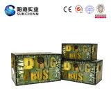 기능적인 유행 가죽 장식적인 저장 트렁크 및 상자 (SCOT00013)
