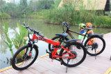 Foldable電気バイクの電気土のバイクの低価格の電気バイク