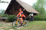 درّاجة [فولدبل] كهربائيّة كهربائيّة وسخ درّاجة [لوو بريس] درّاجة كهربائيّة