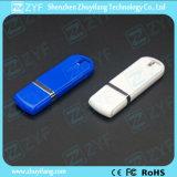 Clé de mémoire USB bleue bon marché promotionnelle du plastique 2GB (ZYF1267)