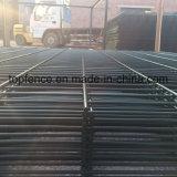 Doppelzaun-Puder überzogenes Ral des draht-868 6005 2230mm x 2500mm Panels