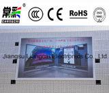 LED al aire libre que hace publicidad de la visualización P10 para la fábrica de Liangcai de la alameda de compras