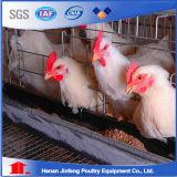 販売法またはHotsaleの層のケージのための自動鶏のケージ