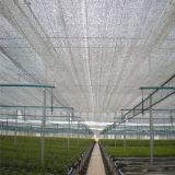 Serre chaude UV d'espace libre d'enduit pour la couverture de film plastique utilisée par légume pour la serre chaude