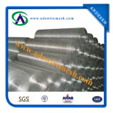 Гальванизировано и PVC Coated Welded Wire Mesh