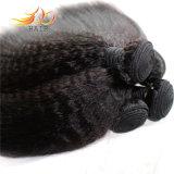 卸し売りバージンの毛のよこ糸のビルマの毛のねじれたまっすぐな8A熱い販売のよこ糸