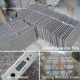 Granit G664 für Jobsteppscountertops-Gehsteig-Platte-Fliese-Produkte