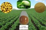 Выдержка сои; Порошок выдержки сои, Isoflavone сои, P. e сои