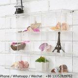 Установленный стеной ясный шкаф устроителя отсека Acrylic 12