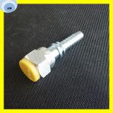 Accoppiamento di tubo flessibile del acciaio al carbonio