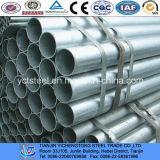 Dn100 lunghezza d'acciaio del tubo galvanizzata serra 6m