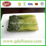 Block gefrorener vollständiger Blatt-Spinat mit reiner Bescheinigung