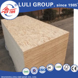 패킹 급료 OSB /Construction 급료 OSB /Furniture 급료 OSB