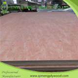 Pappel/Hardwood Core Bbcc Grade 3mm Bintangor Plywood mit Cheap Price