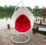 普及した安い価格の藤の振動椅子の藤のハングの卵の椅子D011