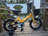 Bicicleta agradável Sr-Kb102 de 2016 miúdos dos olhares