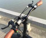 """20 """" vélos de montagne électriques de batterie au lithium de *4.0inch 250W 350W à vendre, batterie cachée pliant le gros vélo de pneu"""