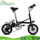 14インチ7の速度36V 250W電気折る都市バイク