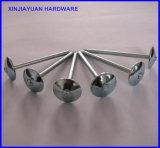 직류 전기를 통하는 못 우산 헤드 꼬이는 정강이를 지붕을 달기