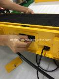 Het Teken van openluchtP3 P5 LEIDENE van SMD Topper van de Taxi