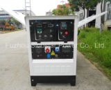 Multifunktions-Gleichstrom-Schweißer-Generator mit Dieselmotor