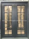 錬鉄のセキュリティ画面の主要な前ドア