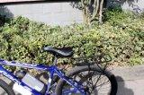 """26 """"販売のための簡単な中断山の電気バイク"""