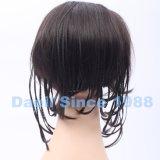 Parte africana dei capelli di stile con le trecce