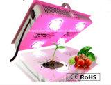 Disegno 600W LED del rifornimento della fabbrica della Cina il nuovo coltiva lo spettro completo chiaro per la pianta