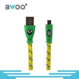 공장 빛을%s 가진 다채로운 땋는 USB 케이블