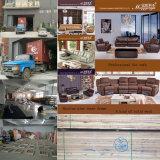 يعيش غرفة [جنوين لثر] أريكة مع [كفّ تبل] رخاميّة (893)