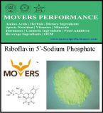 熱い販売法のビタミンのリボフラビン5 ' -ナトリウム隣酸塩