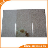 250*500mm Special Size Wall Tile Inkjet Water Proof Tile
