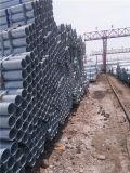 Горячий DIP гальванизированный вокруг стальной трубы (пробки) для лесов
