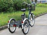 Una bicicletta motorizzata elettrica delle 3 rotelle di grande formato con il cestino posteriore