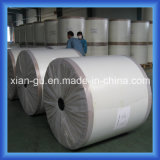 100g Fiberglass Surfacing Facing Mat