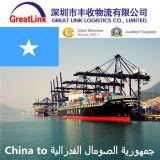 O frete de oceano o mais barato de Shenzhen/Shanghai de China a Mogadishu de Somália
