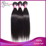 7A 몽고어 Silk Stright Cheap Vigin Remy Human Hair Weft